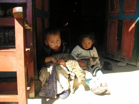 ילדים נפאלים עם חתולים